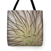 Winter Pasque Flower Tote Bag