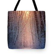 Winter Pathway Tote Bag