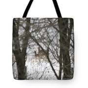 Winter Family Pause  Tote Bag