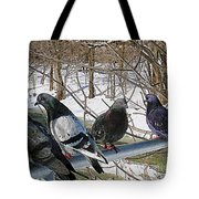 Winter Pigeon Party Tote Bag