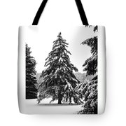 Winter Pines Tote Bag