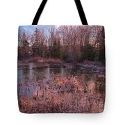 Winter Pond Landscape Tote Bag