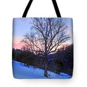 Winter Poplar Tree Tote Bag