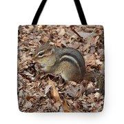 Winter Preparations Tote Bag