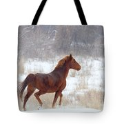 Winter Proud Tote Bag by Mike  Dawson