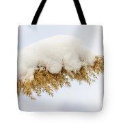 Winter Reed Under Snow Tote Bag by Elena Elisseeva