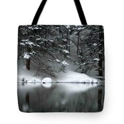 Winter Reflection 004 Tote Bag
