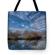 Winter Reflections Tote Bag by Adrian Evans