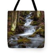 Winter Runoff Tote Bag