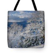 Winter Scene At Berry Summit Tote Bag