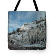 Winter Scene Tote Bag by Jeff Swan