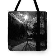 Winter Shadow Tote Bag