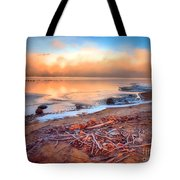 Winter Shore Tote Bag