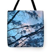 Winter Sky And Snowy Japanese Maple Tote Bag