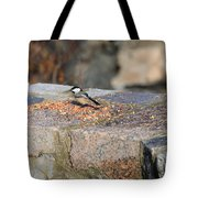 Winter Snack Tote Bag
