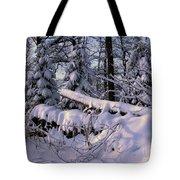 Winter Solemn Tote Bag