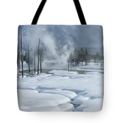 Winter Solitude Tote Bag by Sandra Bronstein