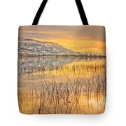 Winter Solstice 5 Tote Bag