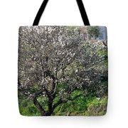 Winter Spanish Nature Almeria Region  Tote Bag