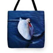 Winter Spin... Swan Style Tote Bag