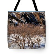 Winter Sprouts Tote Bag