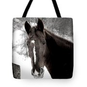 Winter Stance Tote Bag