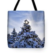 Winter Starburst - D008347 Tote Bag