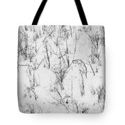 Winter Starkness Tote Bag
