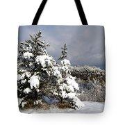 Winter Storm On Natural Bridge - D001598 Tote Bag