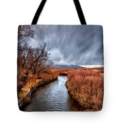 Winter Storm Over Owens River Tote Bag