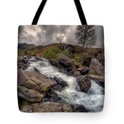 Winter Stream Tote Bag by Adrian Evans
