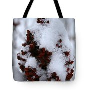 Winter Sumac Tote Bag