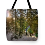 Winter Sun Flares Tote Bag