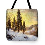 Winter Sundown Tote Bag