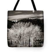 Winter Sunrise And Moonset Tote Bag
