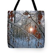 Winter Sunset 2 Tote Bag