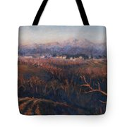Winter Sunset In Brianza Tote Bag