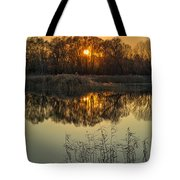 Winter Sunset Reflection Tote Bag