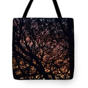 Winter Sunset Silhouette Tote Bag