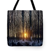 Winter Sunset Through The Trees Tote Bag