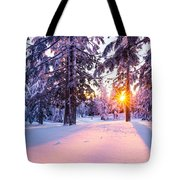 Winter Sunset Through Trees Tote Bag by Priya Ghose