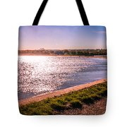 Winter Sunshine Tote Bag by Dawn OConnor