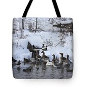 Winter Swimming Hole Tote Bag