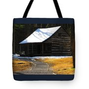 Winter Time At Carter Sheilds Place Tote Bag