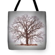Winter Tree 8x10 Crop With White Bars Tote Bag