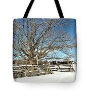 Winter Tree And Fence Tote Bag