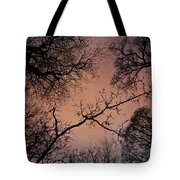 Winter Tree Canopy Tote Bag