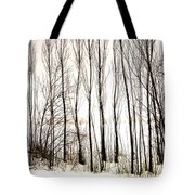 Winter Tree Fence 13283 Tote Bag