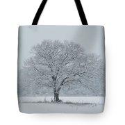 Winter Tree Ipswich Ma Tote Bag
