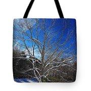 Winter Tree On Sky Tote Bag